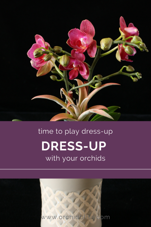 Fantastic-post-on-creating-orchid-arrangements.png