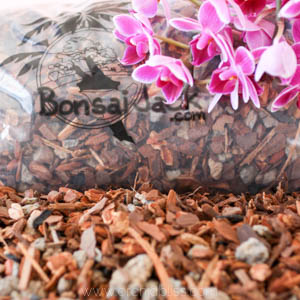 Bonsai Jack Universal Orchid Potting Mix