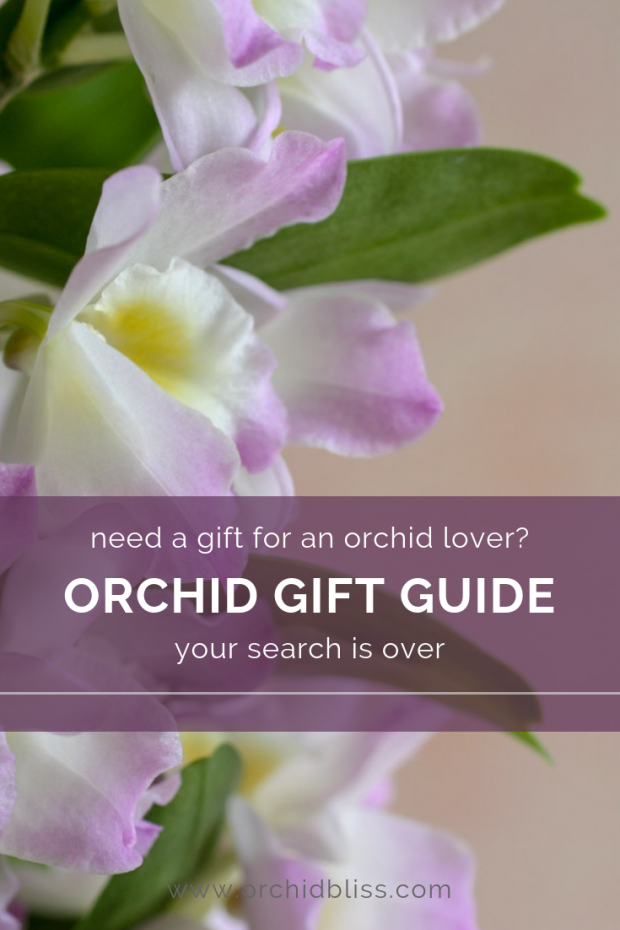 gift ideas for orchid lovers