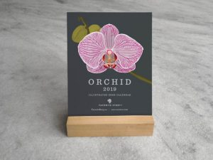 gift ideas - orchids