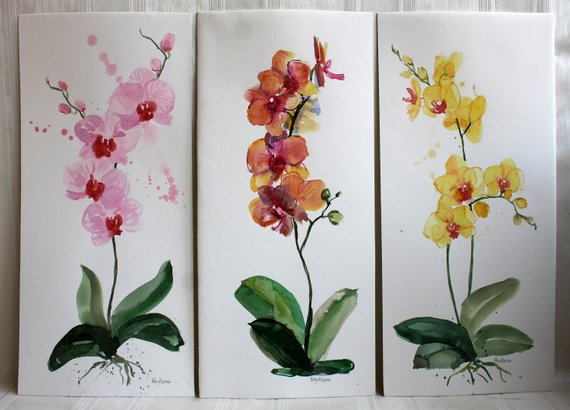 original orchid artwork